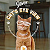 CatsEyeView